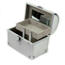 Aluminum Cosmetic Silver Makeup Beauty Case Box (HX-W3640)