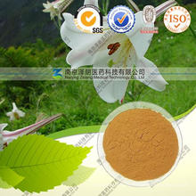 Wild Lily Extract