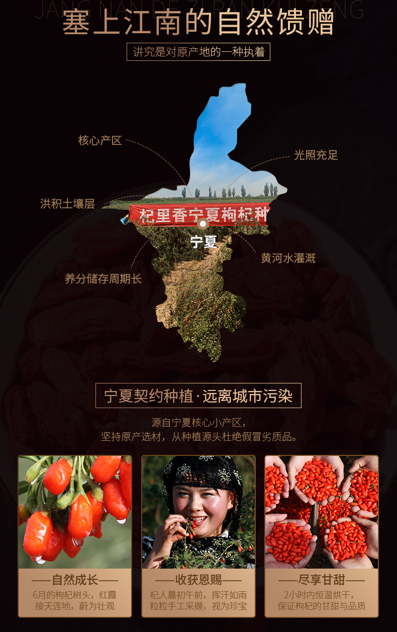 Snack Foods Of Zhongning
