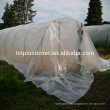 Polytunnel verwendet Polyethylenfolie