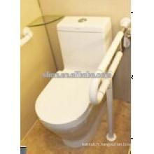 Barre de saisie des toilettes