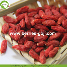 Bacche di Goji all'ingrosso Red Low Pesticide Healthy
