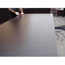 Most Poplar Plywood/Black Film Faced Plywood