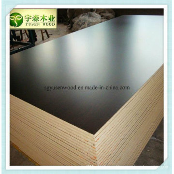 Concrete Plywood / Shuttering Plywood/ Film Faced Plywood for Form Work