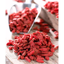 Natural authentic wolfberry/bulk dried goji berries for wholesales