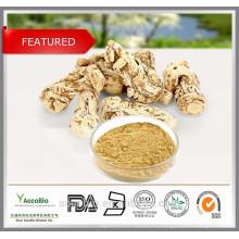 Extracto chino de la raíz de la angélica de la alta calidad del 100% Extracto del polvo de Dong Quai