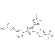Methyl cellulose CAS 138169-43-4