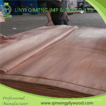 Rotary Cut Thickness 0.15-0.50mm Okoume Face Veneer and Okoume Venner with Cheaper Price