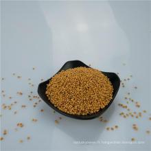 Millet de sorgho blanc / rouge / jaune / noir pour nourrir les oiseaux