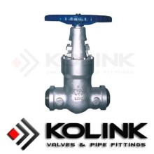 Factory source for API Gate Valve Pressure Seal Gate Valve BW End export to Congo Exporter
