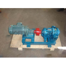High Efficiency LC Roots Pumps