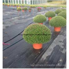 Anti Weed Mat / Weed Control Cubierta de tierra