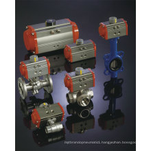Low Temperature Type Pneumatic Actuator -40~80 Degree Working Temperature