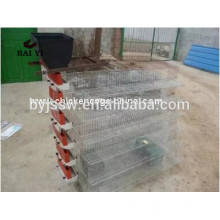 Birds Wire Mesh Quail Cages