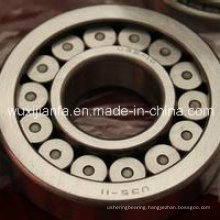 High Precision Single Row Short Cylindrical Roller Bearing