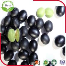 Haricots noirs à vendre / Haricot noir avec noyau vert