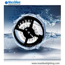 300LEDs 24VDC 5050SMD RGB LED Strip Waterproof