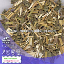 Factory Direct Supply Agastache Rugosa Extract 8:1 10:1