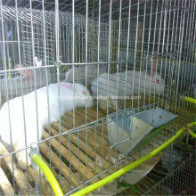 Galvanized Folded Poultry/ Livestock Cage and Coop