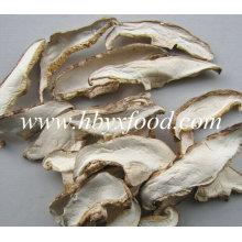 Granel Cultivado Seco Fatia de Cogumelo Shiitake com Haste
