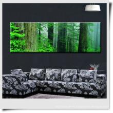 Paisaje moderno del bosque para la decoración casera