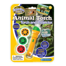 Tocha Animal e Projetor Educacional Toy Childrens
