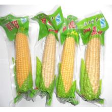 Bolsa de plástico de embalaje de vacío de maíz