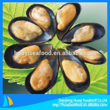 Unsere wichtigsten exportieren Produkt ist gefroren gekochte Halbschale Muschel