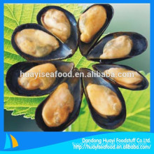 our main exporting product is frozen cooked half shell mussel