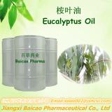Pure Eucalyptus Oil & Eucalyptol Factory