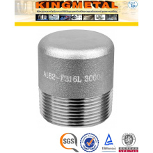 A182 316L 3000# Stainless Steel Round Pipe Plug Fittings Price