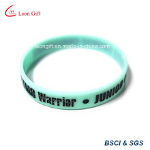Color Fill Logo Silicone Wristband for Promotional Gift
