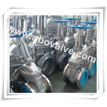 "Stainless Steel CF8 Gate Valve (12"")"