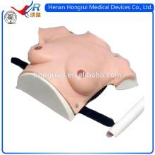 ISO Vivid e modelo de peito realista para cuidados médicos