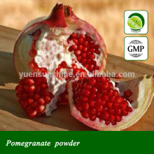 Pomegranate leaf extract powder in bulk