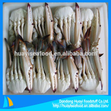 Frozen Cut Blue Swimming Crab With Claw