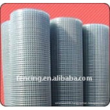 Welded Wire Mesh-----XINLONG