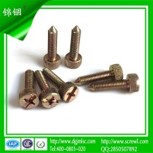 M5 Couleur Zinc Plating Cheese Head Screw for Installation