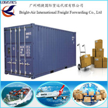 China Ocean Freight Forwarder Sea Freight Connection Container Tracking to St Petersburg Russia