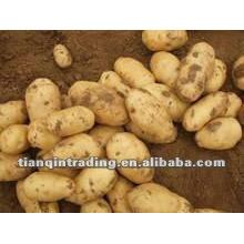 provide fresh potato