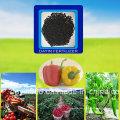 Microbiano adubo orgânico para plantas de árvore de frutas vegetais