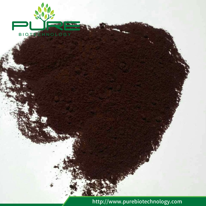 Wholesale Black Goji Berry Extract Powder Black Wolfberry Extract (3)