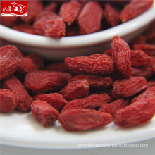 Sun dried 2017 new distributor common goji berry