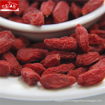 Sun dried 2017 new distributor common goji berry
