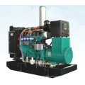 40kVA LPG Gas Power Generator Sets