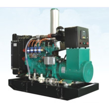40kVA LPG Gas Power Generator Sets