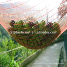 Rede de colheita de azeitona líquida