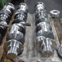 Steel Forging Gear Ring Shaft