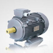 Three Phase Induction Electric Motor (Y160M-4)