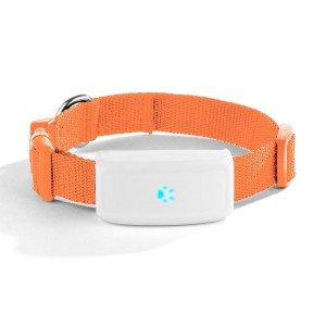 Reloj Diseño GPS Tracker Pet GPS Collar